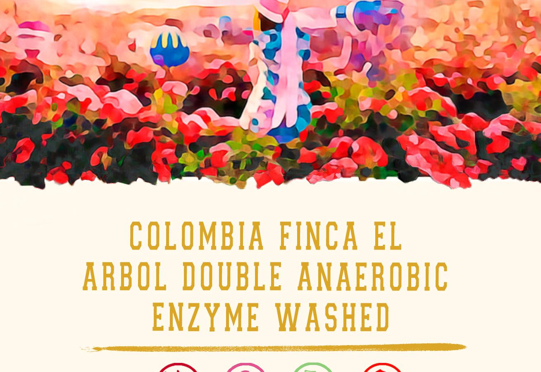Cokain 哥倫比亞古樹莊園雙重酵素厭氧水洗(150g)獨立包