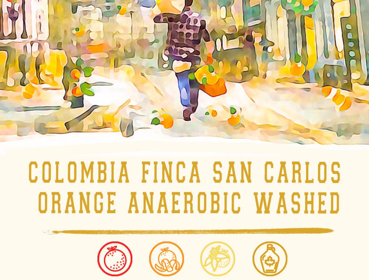 Cokain 委托人📦🍊 – 哥倫比亞Finca San Carlos 香橙厭氧水洗(150g)獨立包 預購